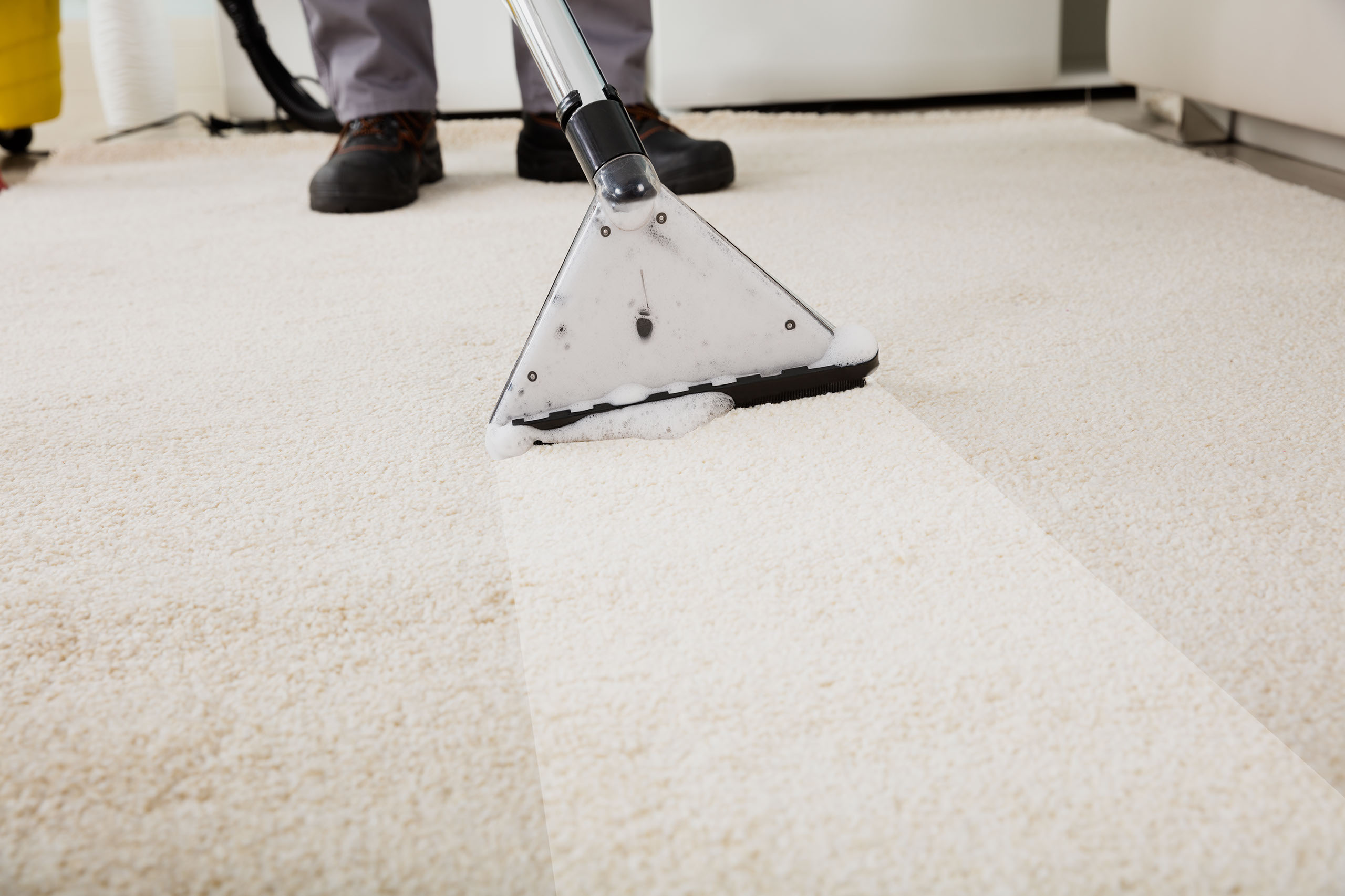 Knoxville Carpet Cleaning Clean Carpets Stains Dirt
